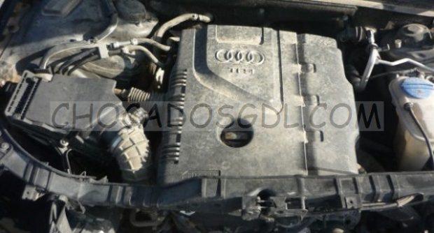 P1140159-620x334-Copiar-620x334